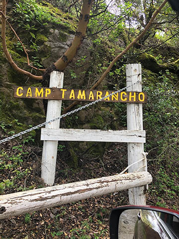 Nature Camp at Camp Tamaracho